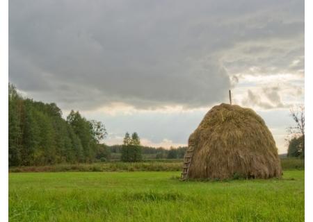 Skansen Architektury Drewnianej Ludności Ruskiej Podlasia w Białowieży
