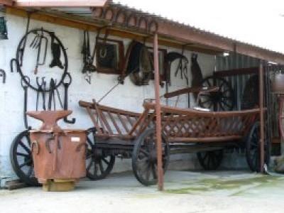 Muzeum Wsi w Narwi