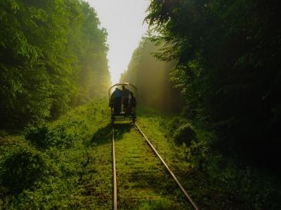 Drezyną przez Puszczę Białowiską